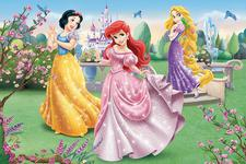Trefl Puzzle By The Fountain Disney Princess (24 Pieces)