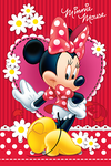 Trefl Puzzle Disney Minnie (260 Pieces) ZC08491